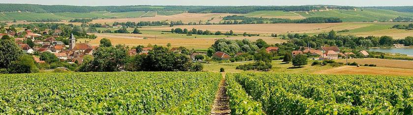 Soyez curieux, visitez la Champagne-Ardenne
